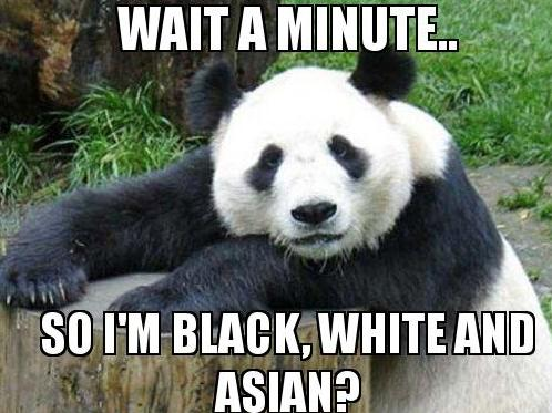 panda-black-white-asian